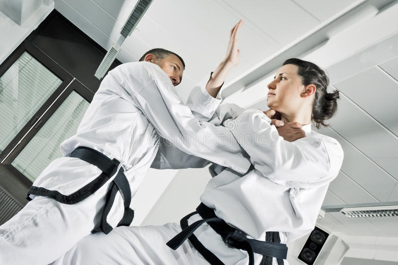 Martial arts fighters. An image of two martial arts fighters stock image