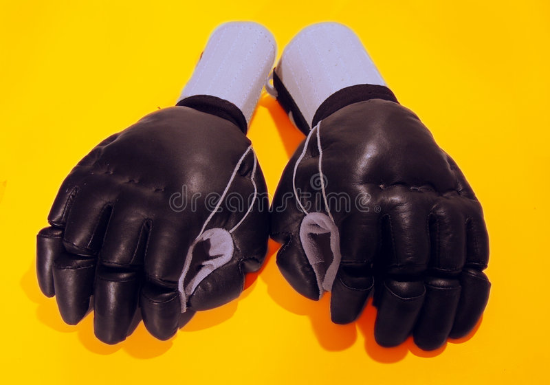 Download Martial Arts Gloves stock image. Image of gloves, sparring - 21049