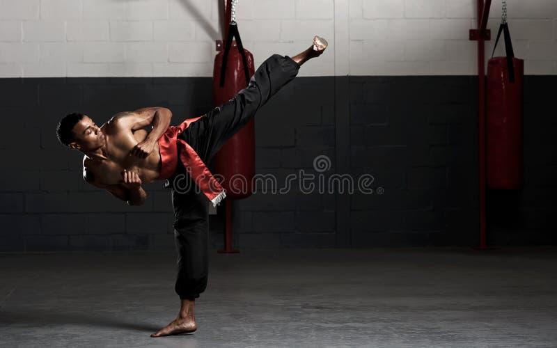 Martial arts kick stock photo