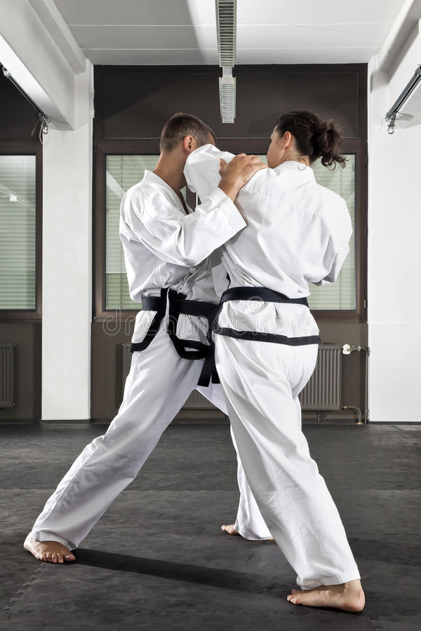 Martial arts master royalty free stock images