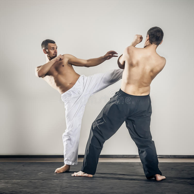 Martial arts master stock image