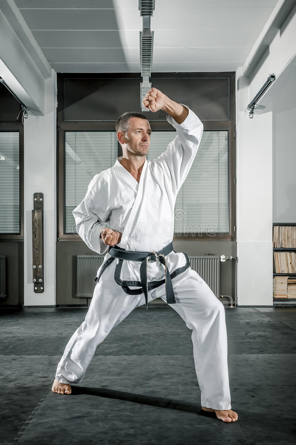 Martial arts master royalty free stock photo
