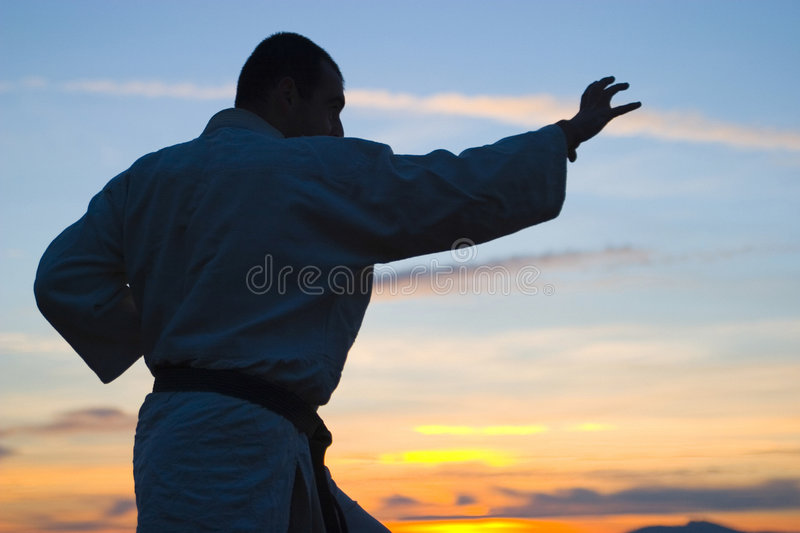 Martial Arts Master Royalty Free Stock Photos