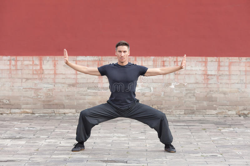 Martial arts master practicing against ancient wall, Beijing, China stock photos