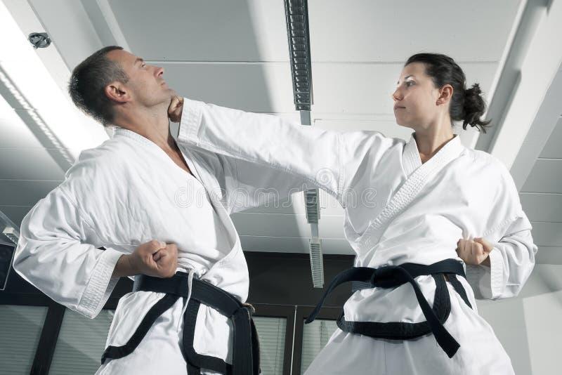 Martial arts masters stock photo