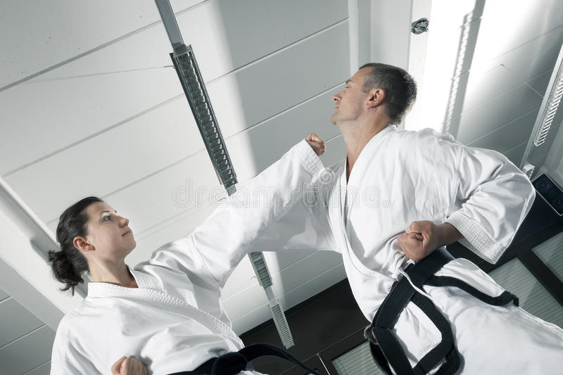 Martial arts masters stock photography