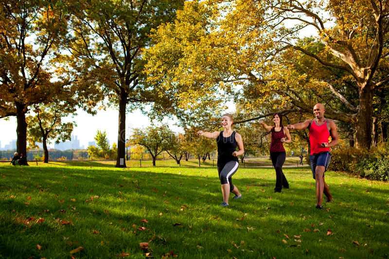 Martial Arts Park. A group of young adults training martial arts in the park stock image