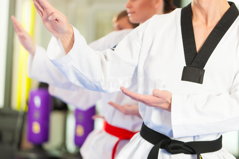Martial Arts sport training in gym. People in a gym in martial arts training exercising Taekwondo, the trainer has a black belt stock photography