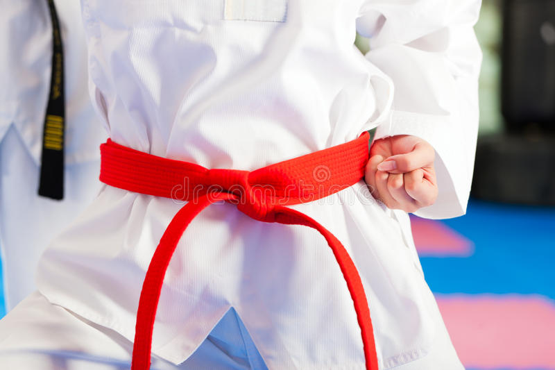 Martial Arts sport training in gym. People in a gym in martial arts training exercising Taekwondo, the trainer has a black belt royalty free stock photos