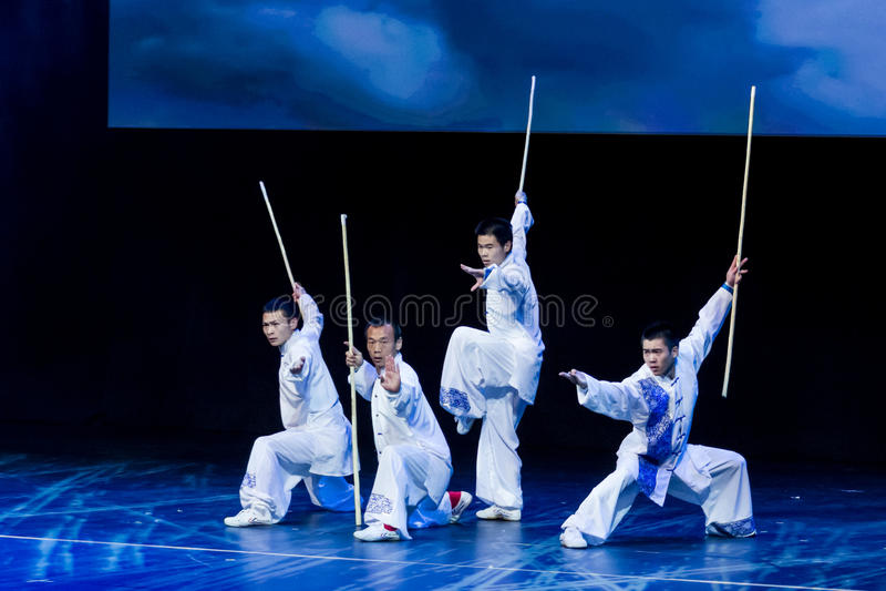 Martial Arts. Spring Festival 2013. Dublin royalty free stock photos