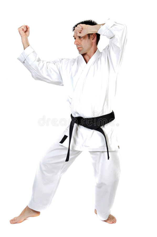 Download Martial arts stance stock image. Image of person, people - 3818307