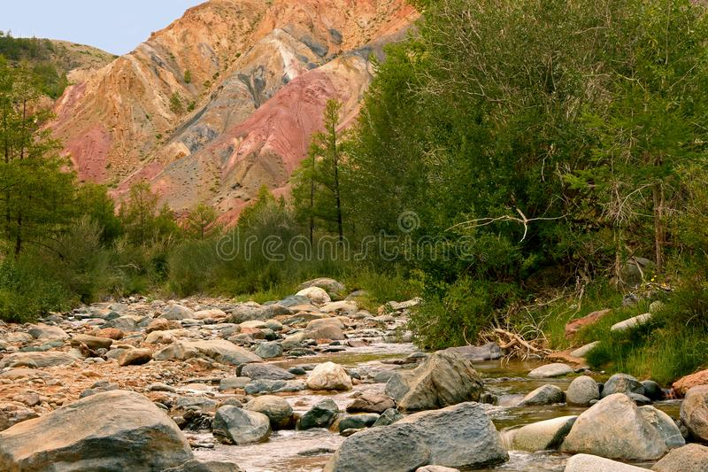 Martian landscape of the Altai Mountains. Siberia. Martian landscape of the Altai Mountains. Colorful hills and green trees with a mountain river. Siberia stock image