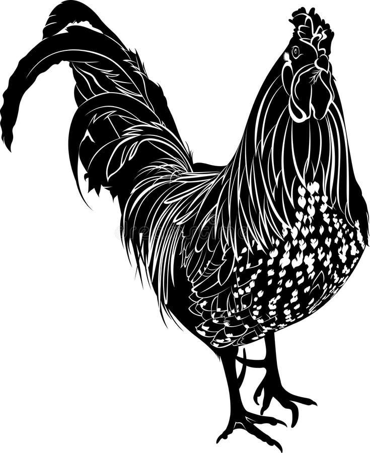 martillo Gallo de las aves de corral Gallo del pájaro del granjero stock de ilustración