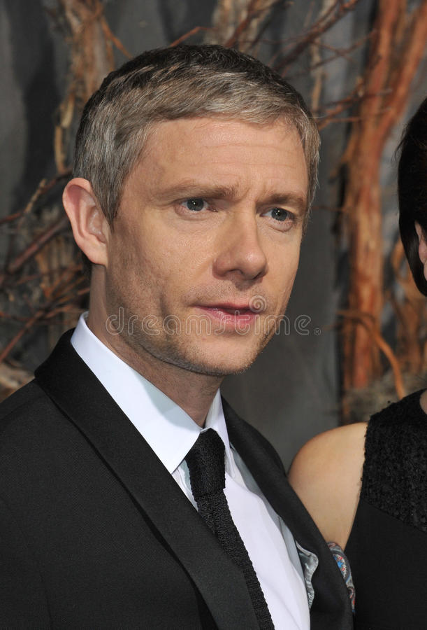 Martin Freeman. LOS ANGELES, CA - DECEMBER 2, 2013: Martin Freeman at the Los Angeles premiere of his movie The Hobbit: The Desolation of Smaug at the Dolby stock photo