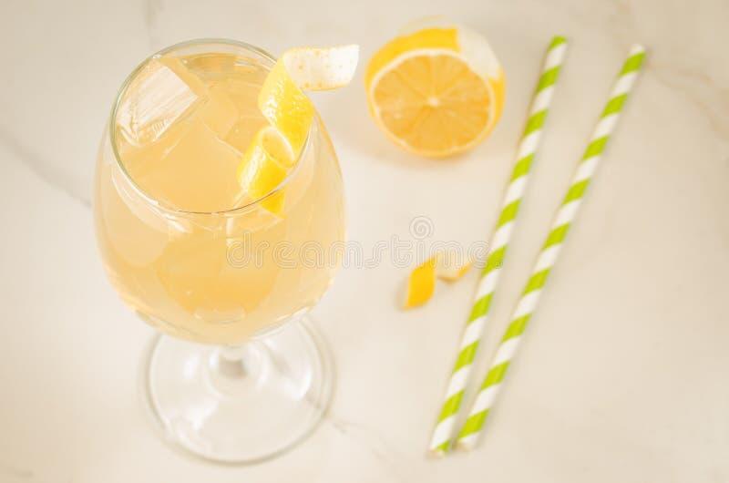 Martini-cocktail met ijs, stro en een een citroen/Martini-cocktail met ijs, stro en een citroen Hoogste mening stock afbeelding
