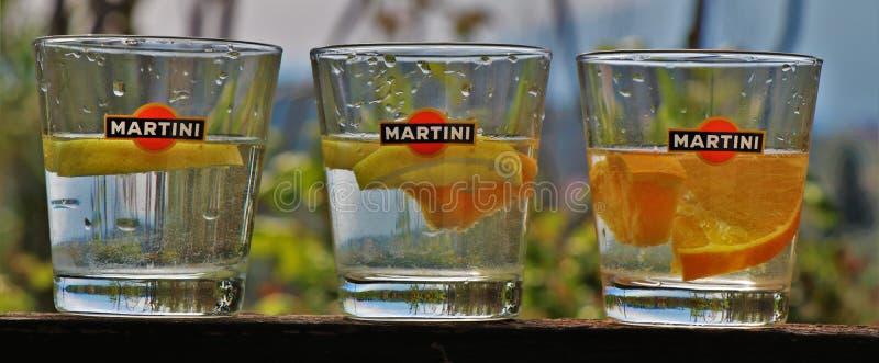 Martini-glas, met citroen en sinaasappel royalty-vrije stock foto