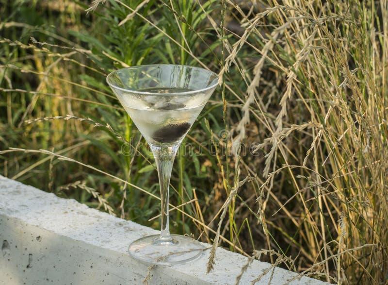 Martini-Glas op de Gebieden royalty-vrije stock foto