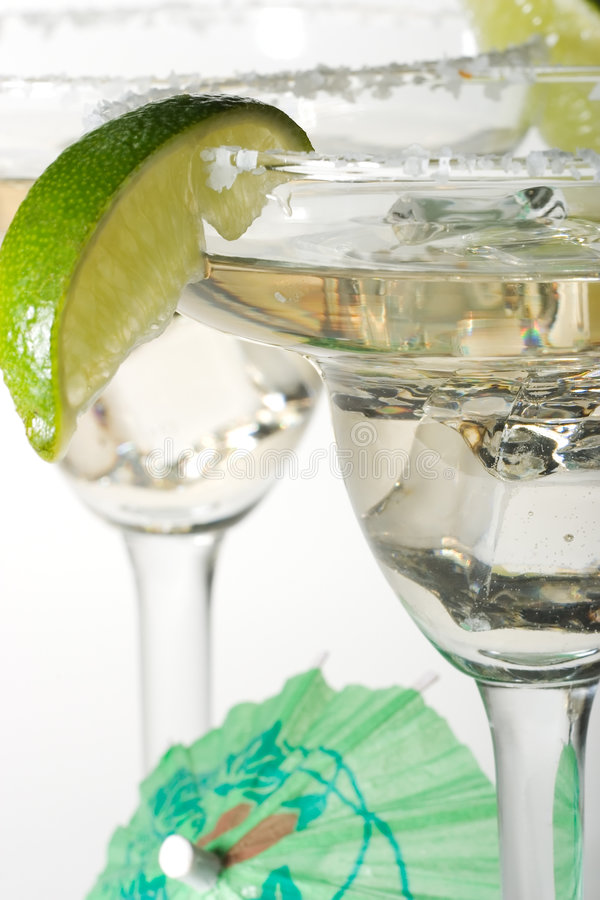Free Martini Glasses With Cocktails Royalty Free Stock Photography - 1701327