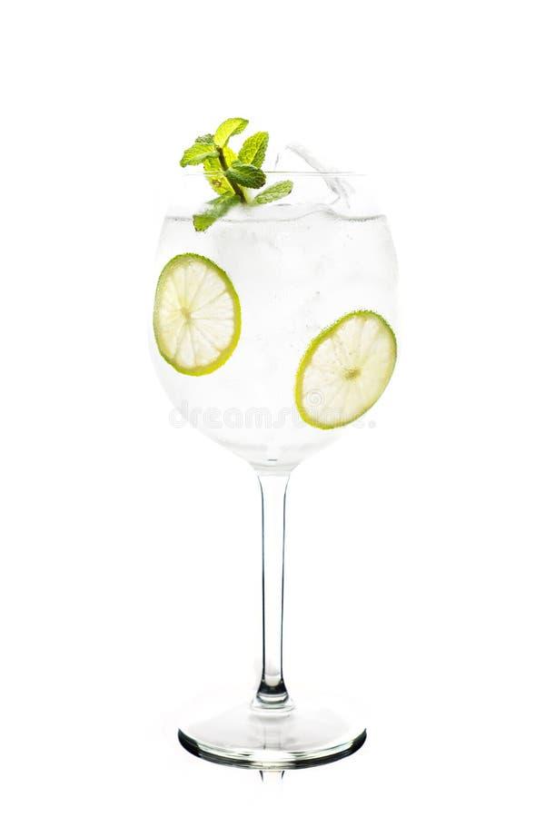 Martini royalecoctail i vinexponeringsglas med limefrukt och mintkaramellen som isoleras på vit bakgrund royaltyfria bilder