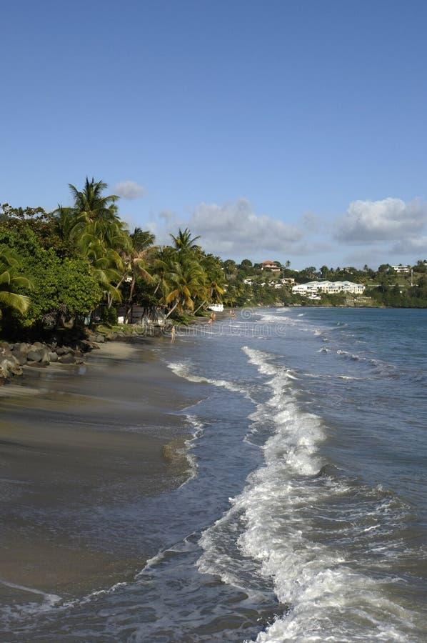 Martinique stockfoto