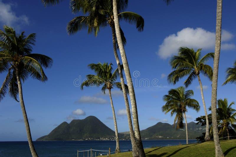 Download Martinique, Beach Of  Le Diamant Stock Image - Image: 8459981