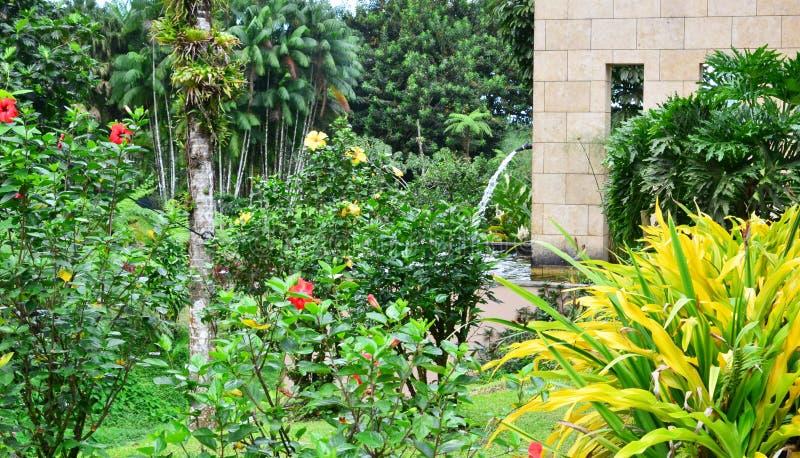 Martinique den Domaine d'Emerauden parkerar royaltyfria bilder