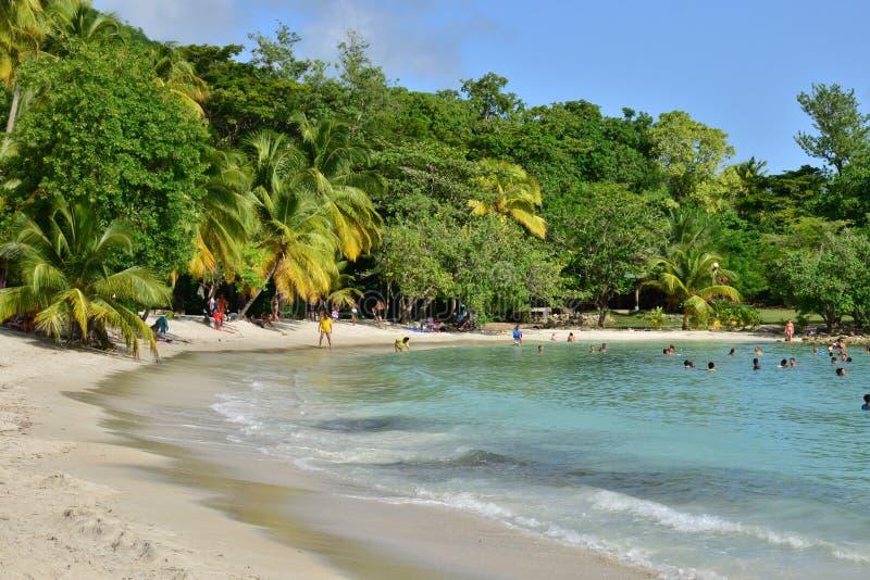 Martinique pittoresk stad av Riviere Pilote i västra Indies royaltyfria foton