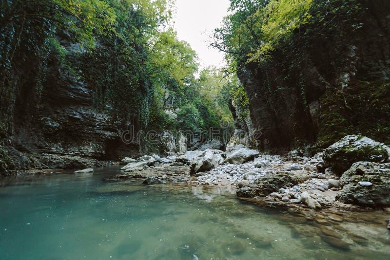 Martvili kanjon i Georgia H?rlig naturlig kanjon royaltyfria bilder