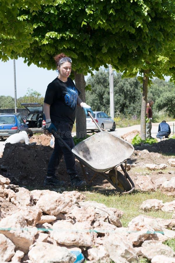 Maruggio, Italia - 28 de abril de 2019 - construcci?n de una pared baja - viejo arte arquitect?nico tradicional de Apulian - Mure foto de archivo libre de regalías