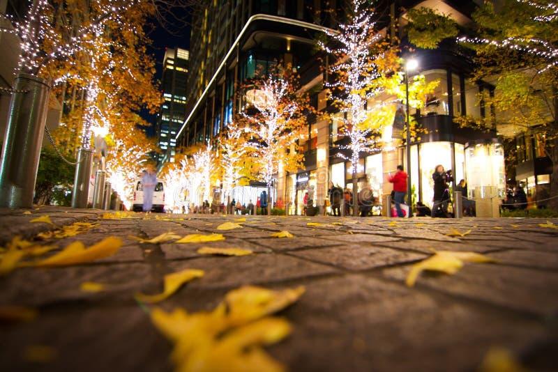 Marunouchi do Tóquio foto de stock royalty free