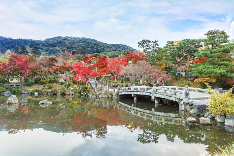 Maruyama Koen (Maruyama-Park) in de herfst, in Kyoto stock fotografie