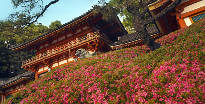 Maruyama Park in Gion - Japan. Maruyama Park in the Gion District of Kyoto in Japan stock photography