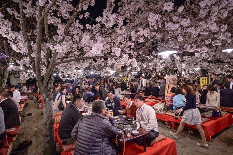 Maruyamapark stock afbeelding