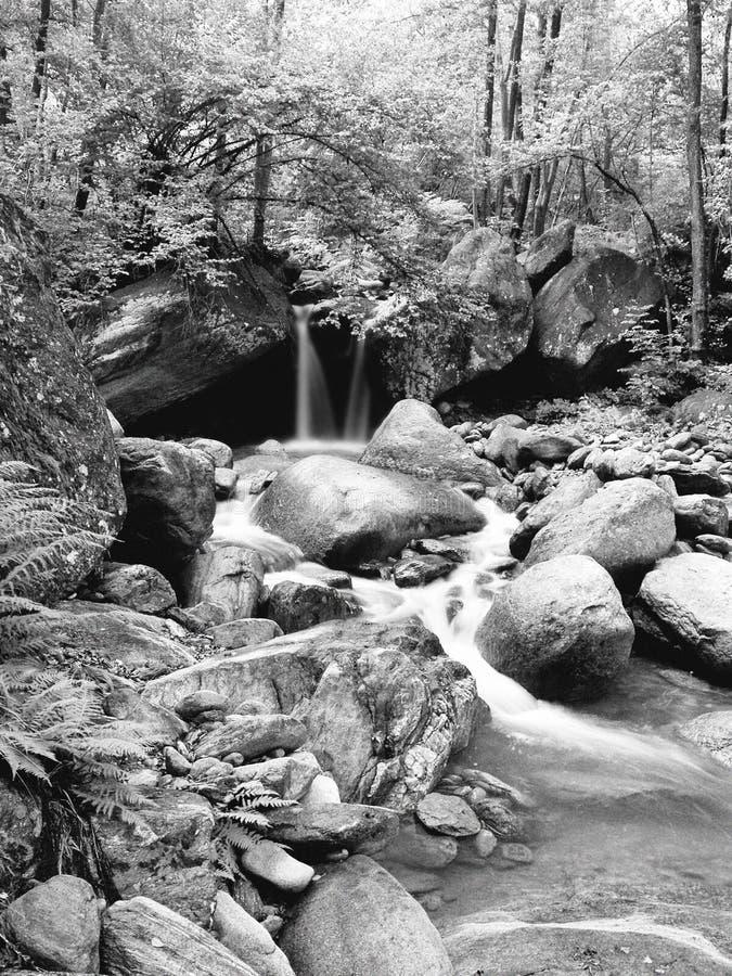 Vattenfall i svartvitt fotografering för bildbyråer