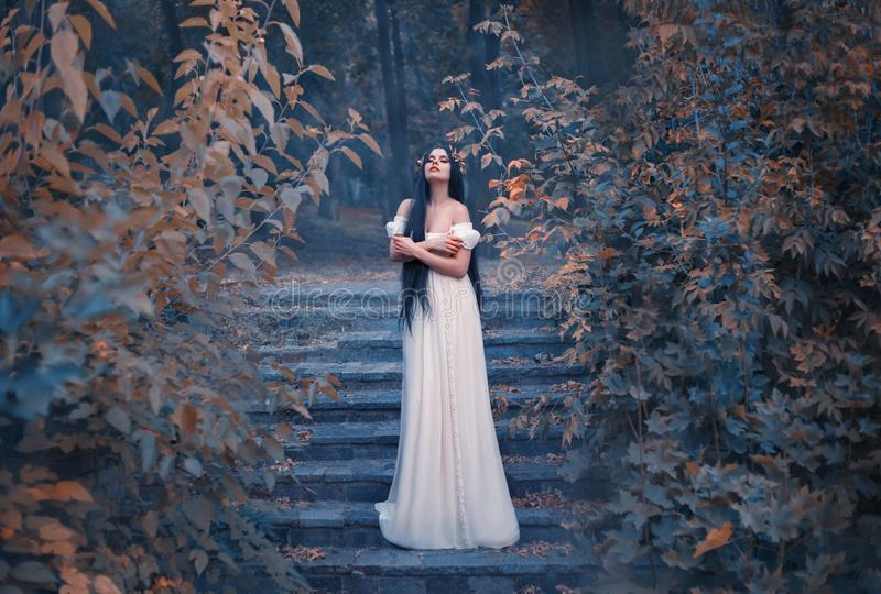 A marvelous, incredible Greek goddess of love, Aphrodite, descended to earth. Bliss and pleasure fill her soul. A young. Woman with long hair in a white dress royalty free stock image