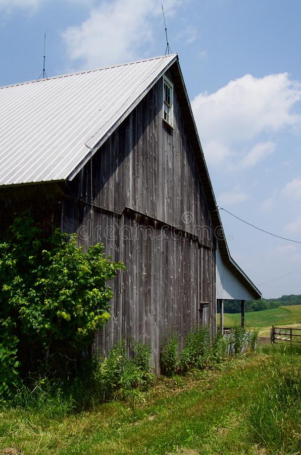 Download Maryland Country Barn stock photo. Image of farming, food - 8730