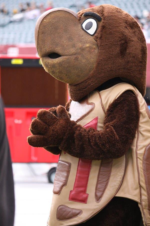 Maryland s mascot  the Turtle