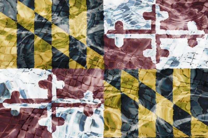 Marylandflag纹理  皇族释放例证