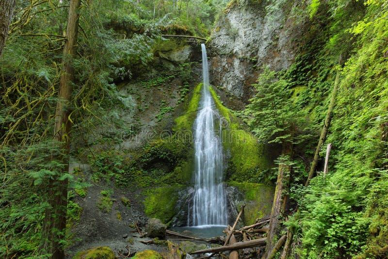 Marymere Falls, Olympic National Park. USA stock photo