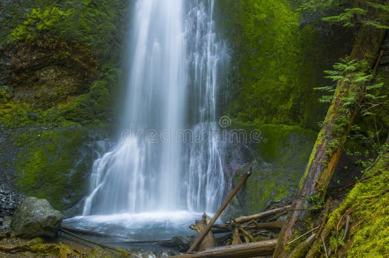 Marymere Falls Olympic National Park Washington state stock image