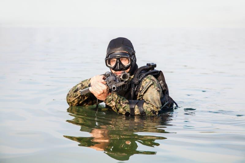 Marynarki wojennej foki płetwonurek obraz stock