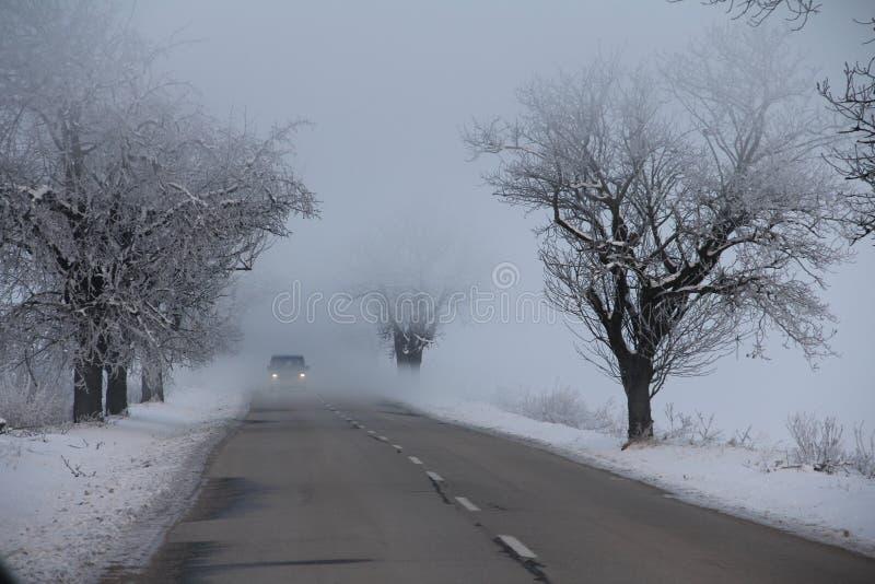 Marznięcie ranku mgła zdjęcie stock