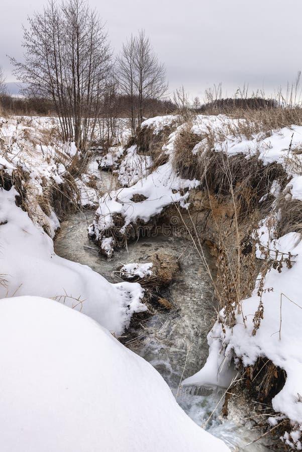 Marznięcie strumień w zimie zdjęcie royalty free