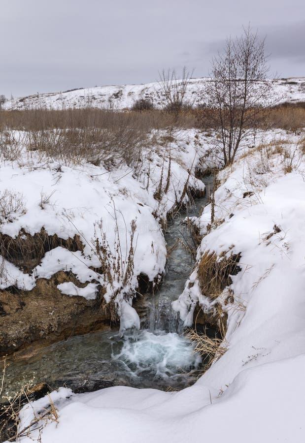 Marznięcie strumień w zimie fotografia royalty free
