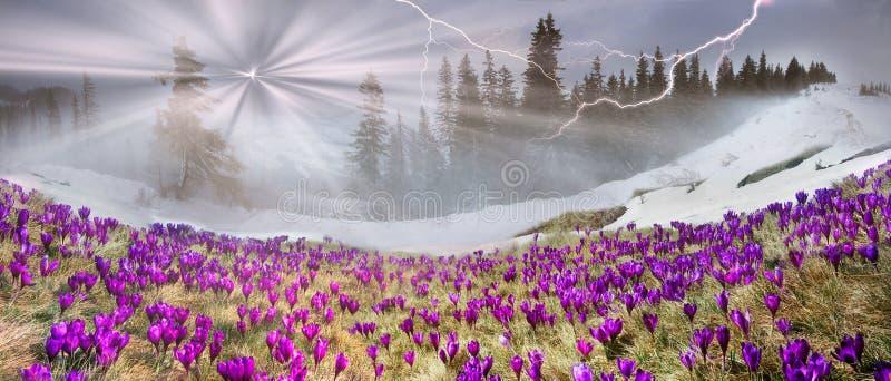 Marzo Carpathians fotografia stock