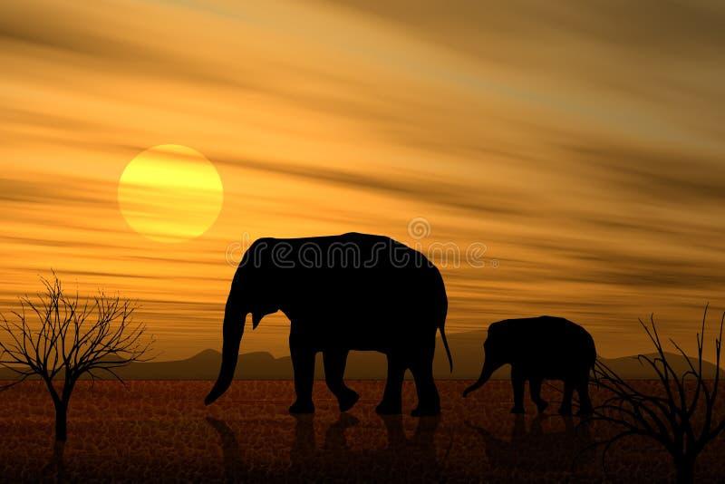 Marzo de los elefantes en la puesta del sol