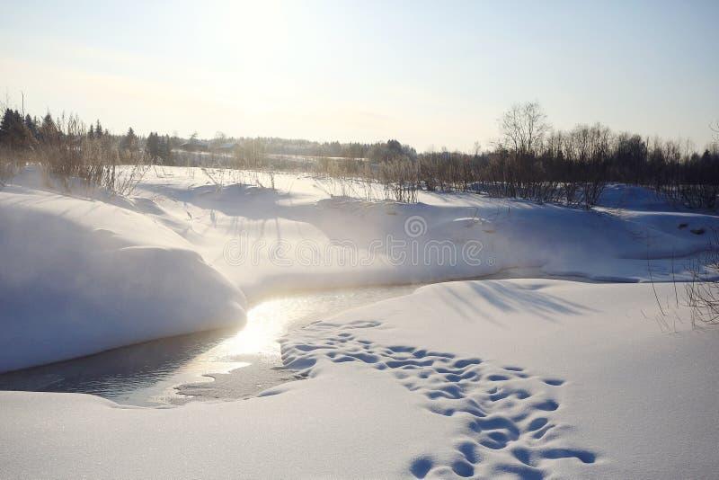 Marzo en The Creek foto de archivo