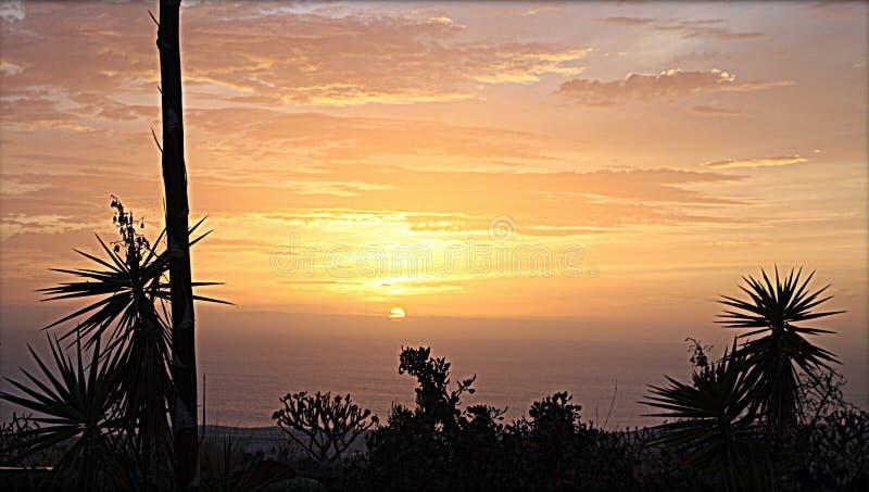 Marzyć w miękkim wieczór świetle na uroczej wyspie los angeles Palma obraz stock