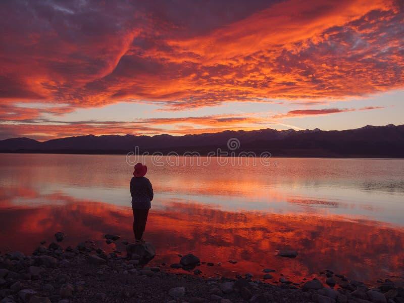 Marzycielka, sylwetka kobiety pozycja wzdłuż jeziora przy zmierzchem, ludzka siła, psychologii pojęcie zdjęcia royalty free