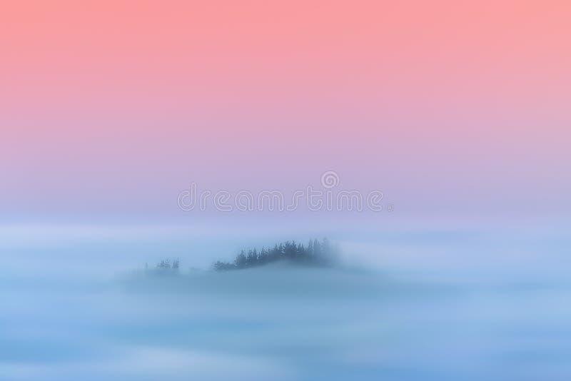 Marzycielski magia krajobraz mgławy las obraz royalty free
